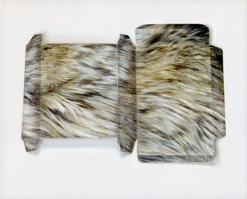 'Fur-Effect Box' image