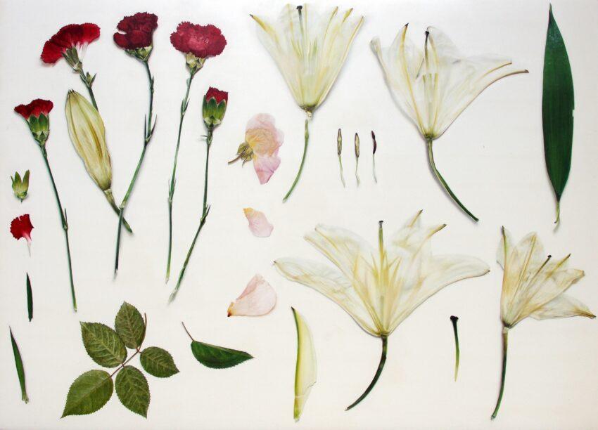 'Vase of Flowers' image