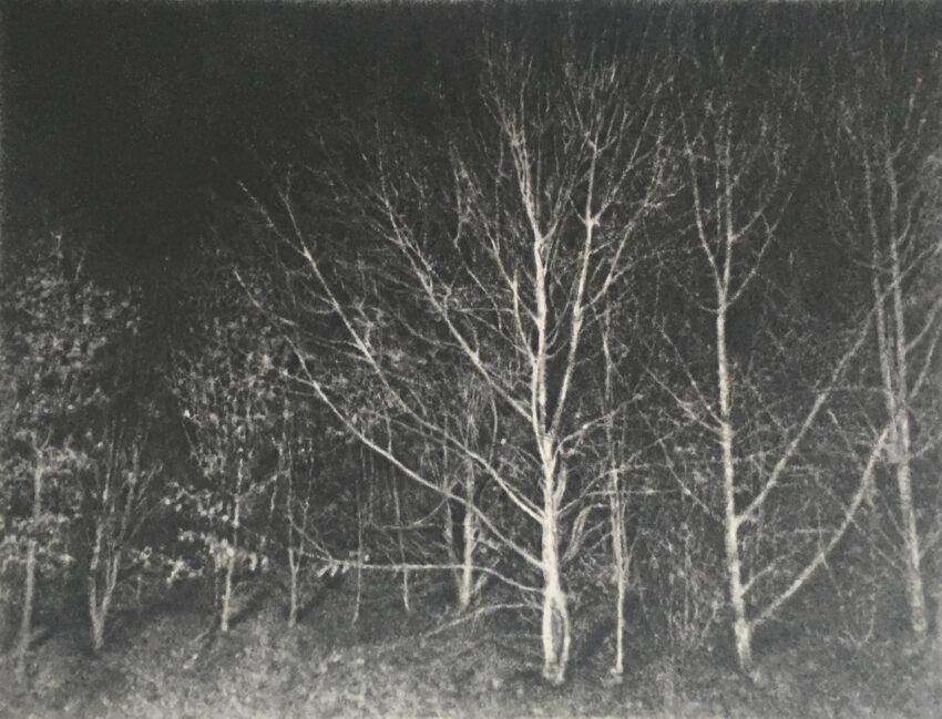 'Headlights' image
