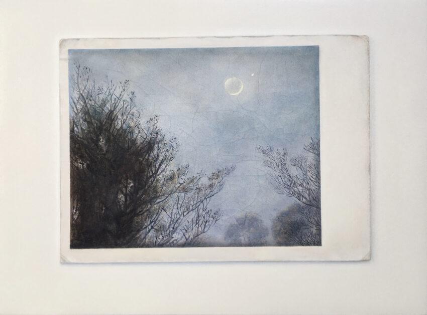 'Friedrich Moon' image